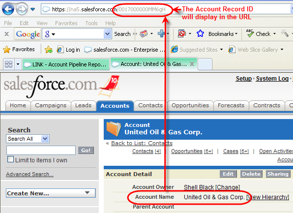 Find Account Record ID in URL